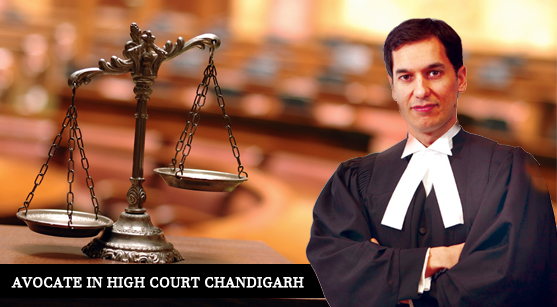 Advocates in Chandigarh High Court | Lawyers in Chandigarh ...